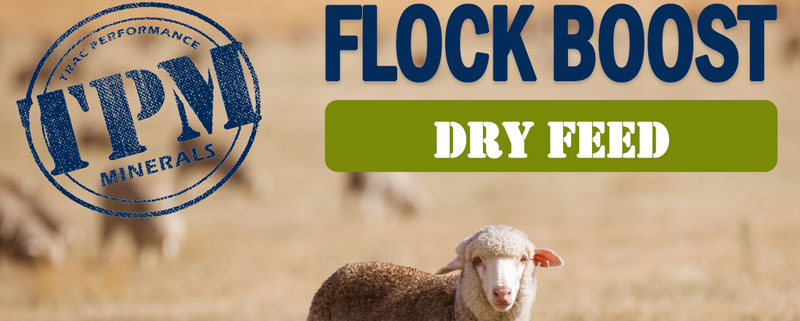 TPM Flock Boost Dry Feed