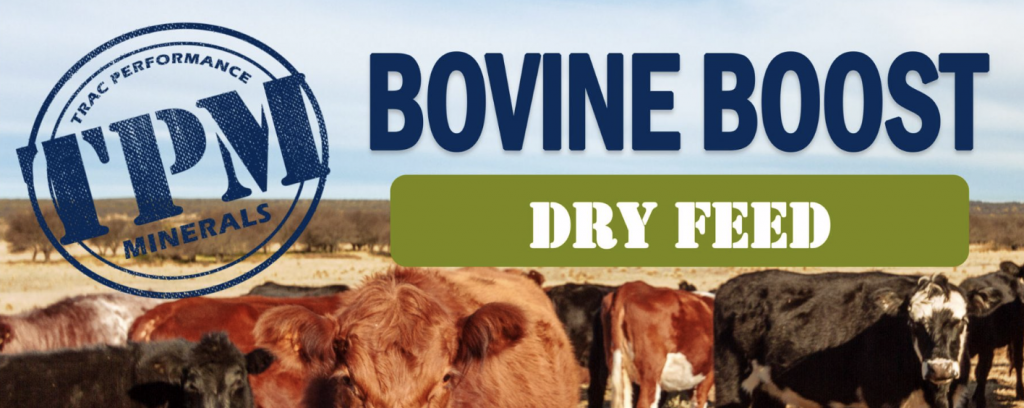 Bovine Boost Dry Feed – optimise cow performance